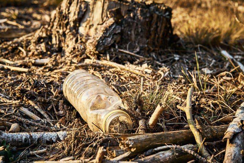 Verontreinigingsmilieu van oude plastic fles in bos royalty-vrije stock afbeelding
