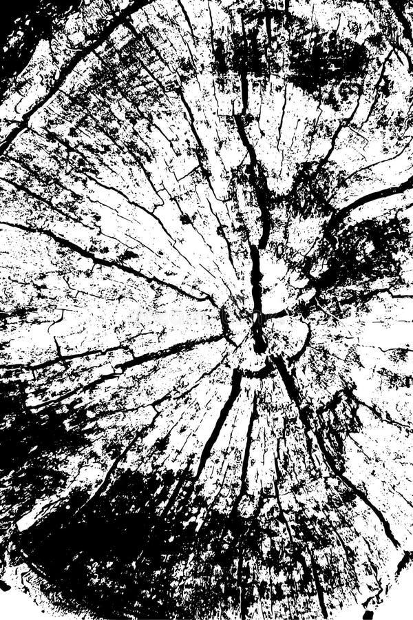 Verontruste halftone grunge vectortextuur - de houten achtergrond van de boomstamkras Zwart-witte boomringen - Vector vector illustratie