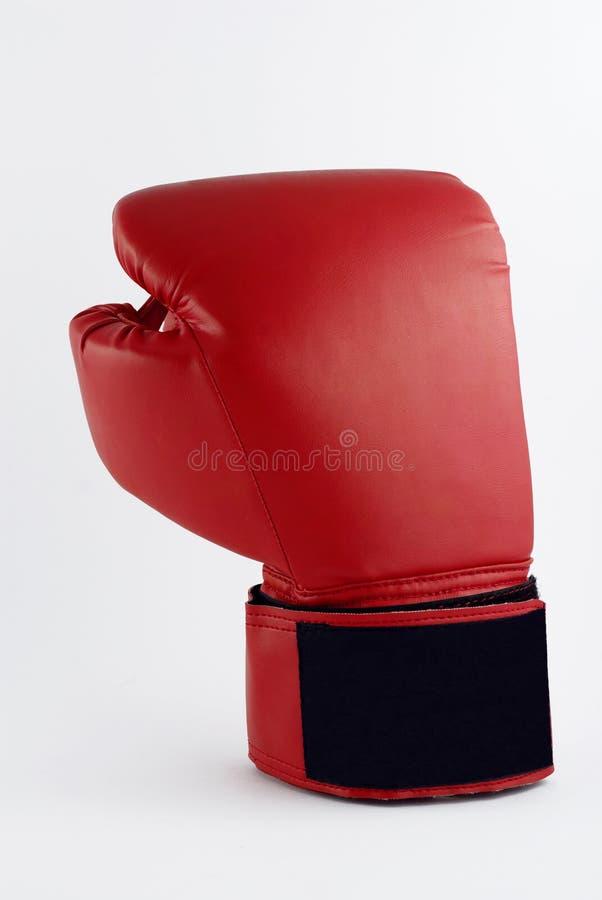 Verpacken-Handschuh stockfoto