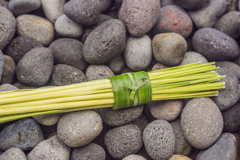 Verpackenkonzept des umweltfreundlichen Produktes Lemongras wickelte in einem Bananenblatt, als Alternative zu einer Plastiktasch lizenzfreie stockbilder