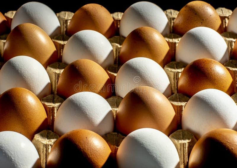Verpackung von den gelben und weißen Hühnereien vereinbart in einer diagonalen Zusammensetzung auf einem schwarzen Hintergrund stockbild