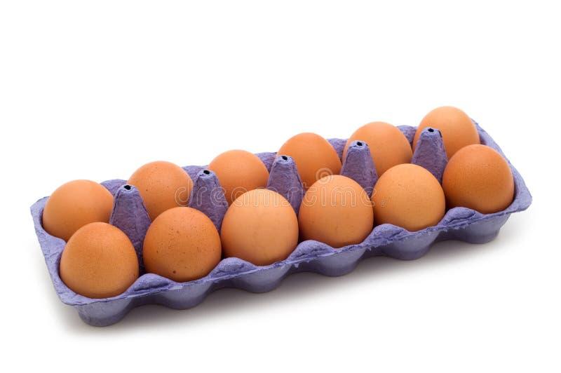 Verpakking van eieren stock foto's