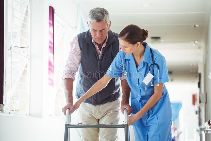 Verpleegster die de hogere mens met het lopen hulp helpen stock fotografie