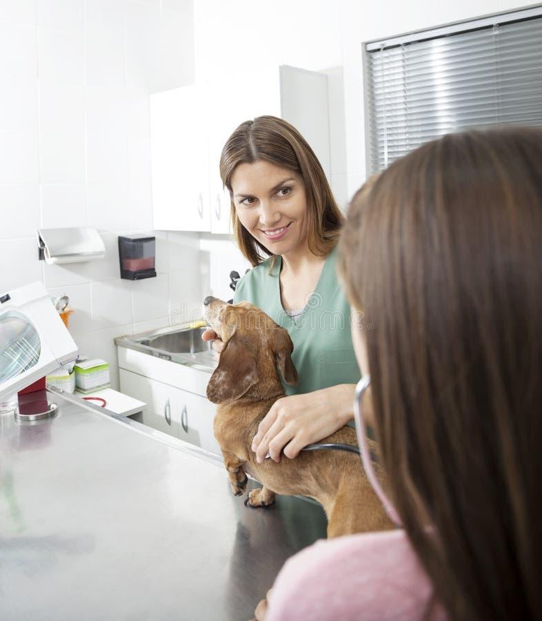 Verpleegster Looking At Girl die aan de Hartslag van de Tekkel luisteren stock foto