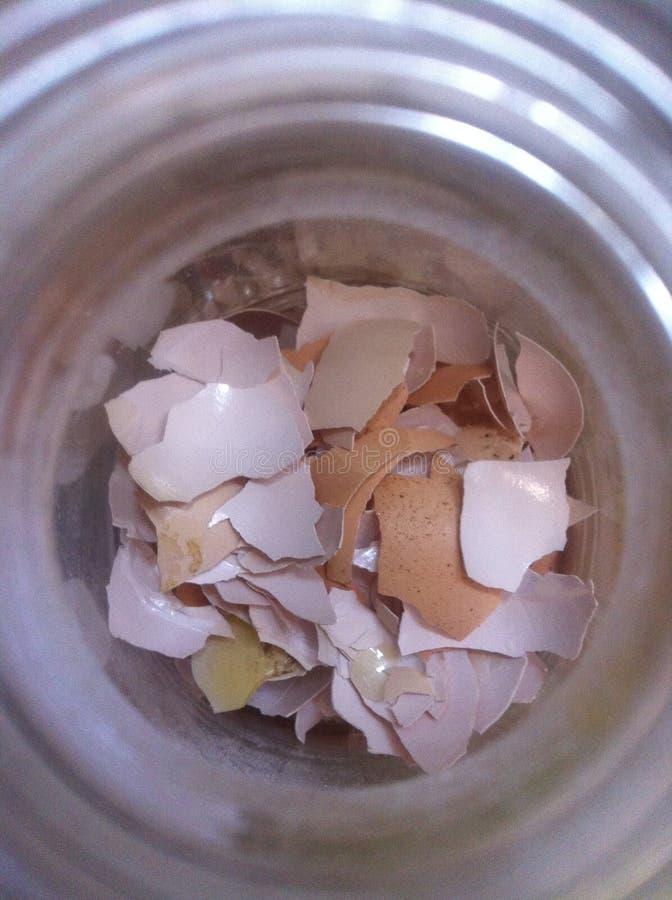 Verpletterde eierschaal binnen een transparante container stock fotografie