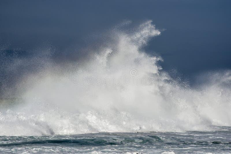 Verpletterende Golf in Oceaan stock afbeeldingen