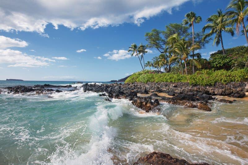 Verpletterende Golven in Tropisch Strand Makena Cove, Maui HALLO royalty-vrije stock afbeelding