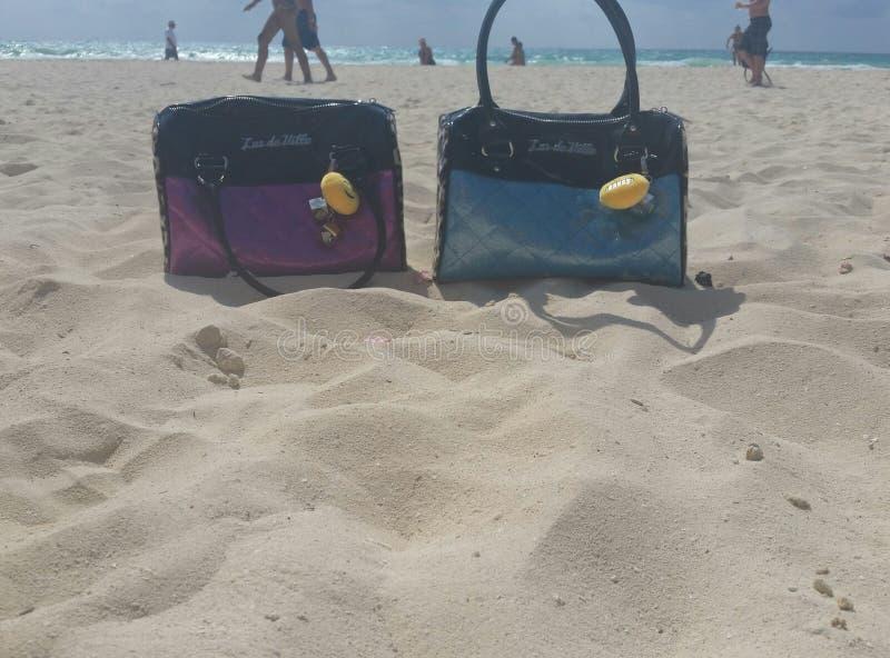 Verrückte Geldbeutel am Strand lizenzfreies stockfoto