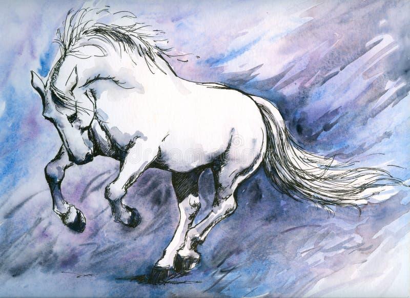 Verrücktes Pferd lizenzfreie abbildung