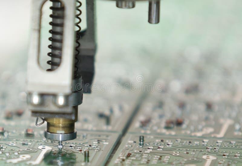 Verraco del circuito imagen de archivo