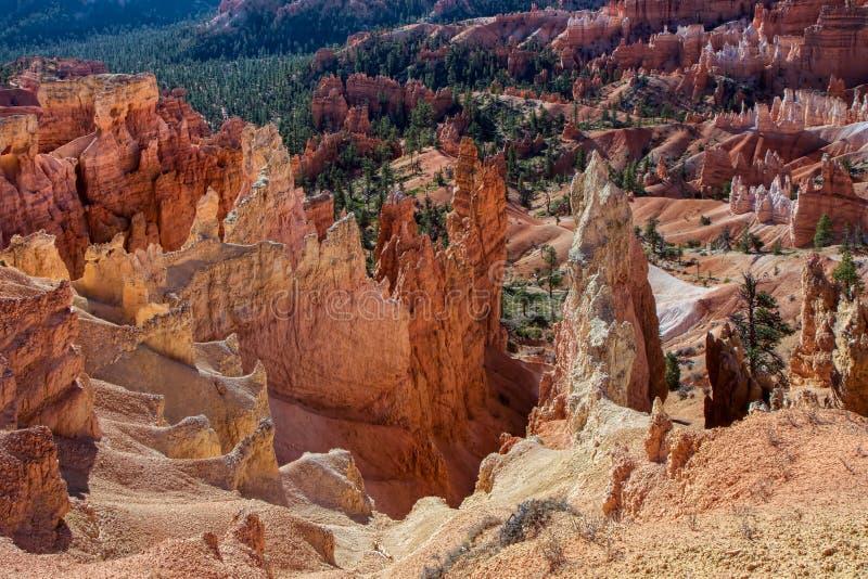 Verraderlijke Afdaling in Bryce Canyon royalty-vrije stock fotografie