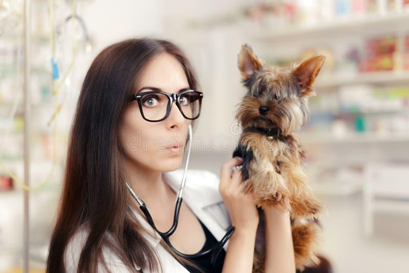 Verrast Veterinair Female Doctor met Leuke Hond stock foto's