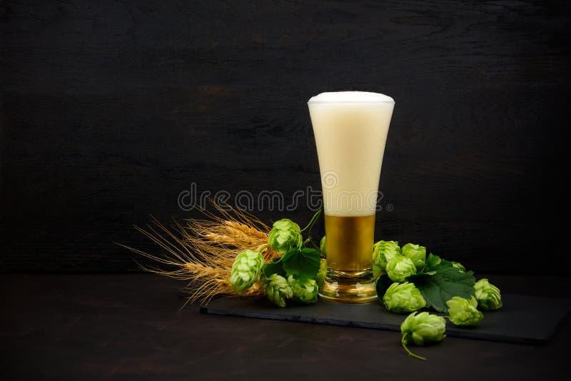 Verre de bière avec les houblon et les oreilles verts de blé sur la table en bois foncée Durée toujours 1 photographie stock libre de droits