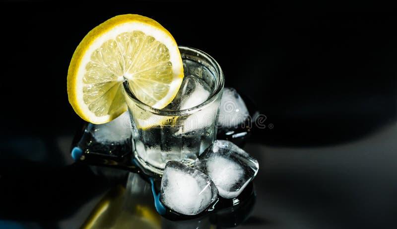 Verre de genièvre, de glace et de citron photographie stock