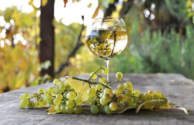 Verre de vin blanc et de raisins photos libres de droits