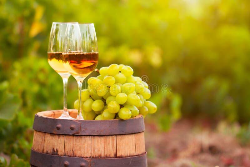 Verre de vin blanc, jeune vigne et groupe de raisins contre le vineya photos libres de droits