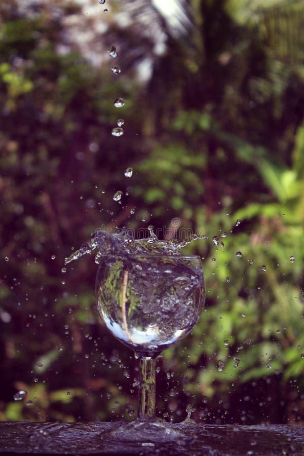 Verre de vin d'éclaboussure de l'eau image libre de droits