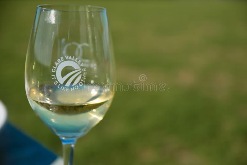 Verre de vin de Clare Valley images stock