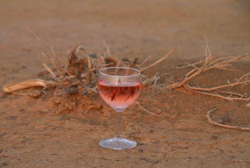 Verre de vin sur le sol africain sec image libre de droits