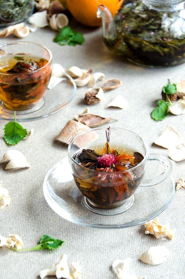 Verre vert de thé d'oolong de tasse image libre de droits