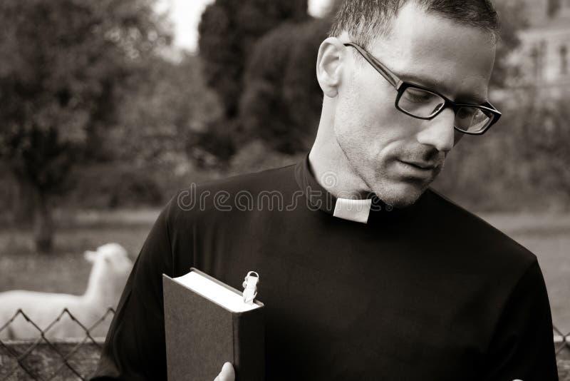 Verres de prêtre beau et bible de port de se tenir avec l'alpaga dans le domaine derrière lui photos stock