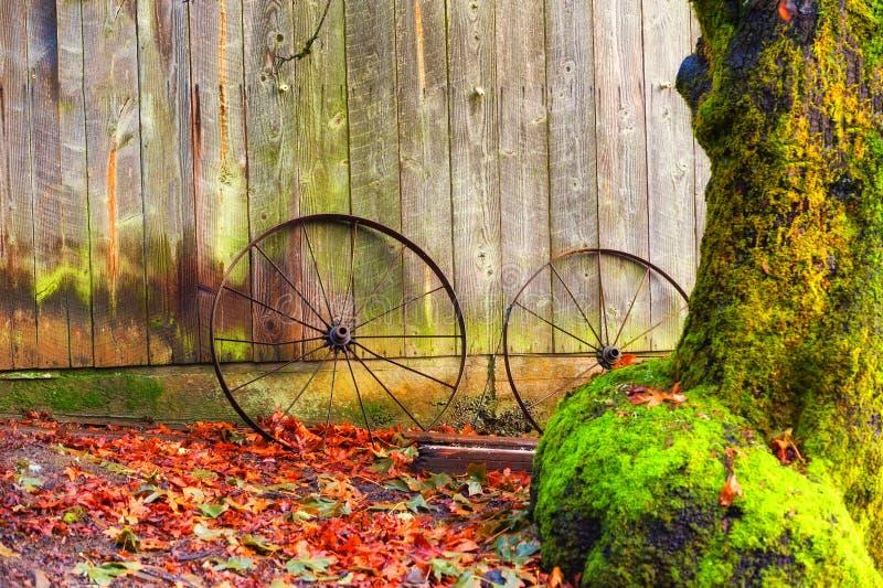 Verrostete Räder lehnen sich an einer Scheune unter Herbstlaub stockfotos