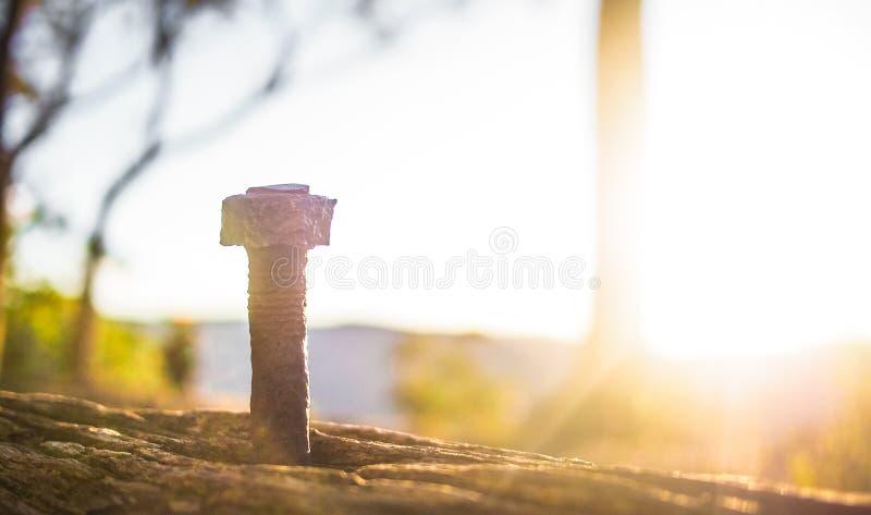 Verrosteter Nagel in der Natur lizenzfreies stockfoto