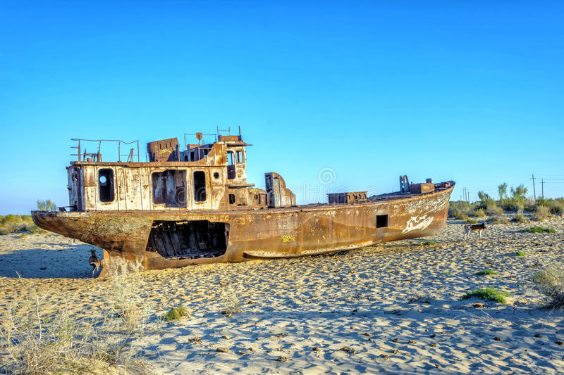 Verrostetes Schiff im Schiffskirchhof, Usbekistan stockfoto
