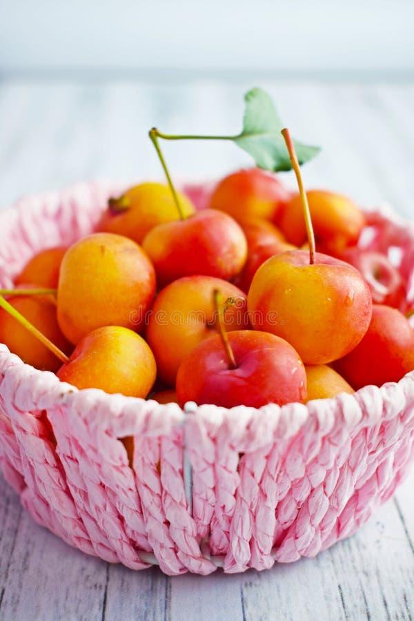 Verrukkelijke, rijpe kleine appels royalty-vrije stock afbeeldingen