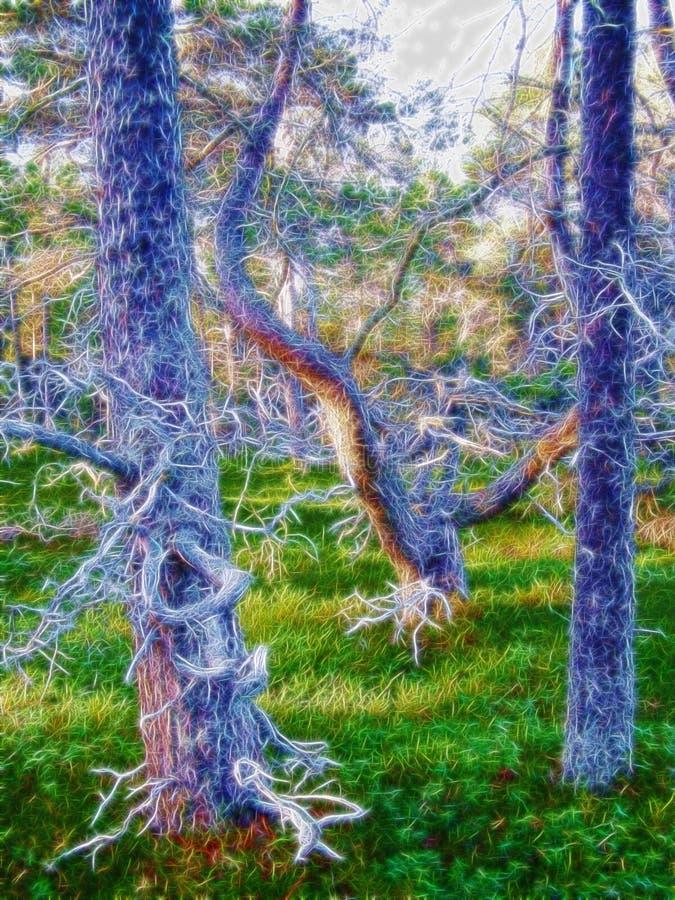 Verrukt bos, magisch hout, installatiehersenschim, nieuwigheid royalty-vrije illustratie
