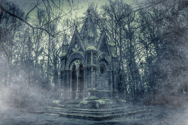 Verrukte mening van monumentaal hout van Sasseto - Torre Alfina Acquapendente, Italië met mist royalty-vrije stock fotografie