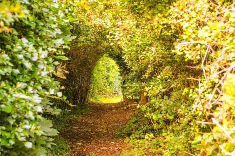 Verrukte Tunnel royalty-vrije stock afbeelding