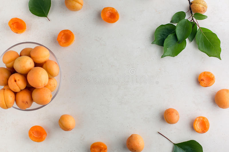 Vers abrikozenpatroon stock afbeelding
