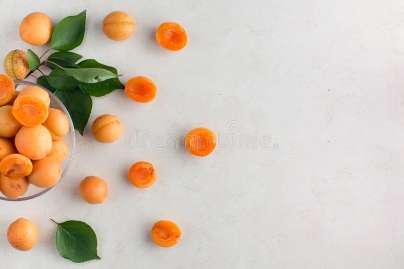 Vers abrikozenpatroon royalty-vrije stock afbeelding