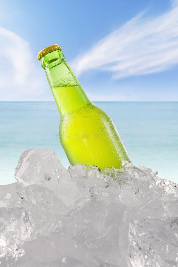 Vers bier in de fles met ijsblokje bij strand royalty-vrije stock foto's