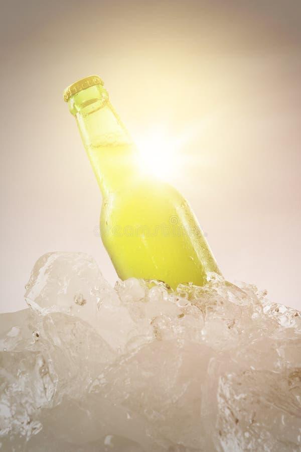 Vers bier in de fles met instagrameffect royalty-vrije stock foto's