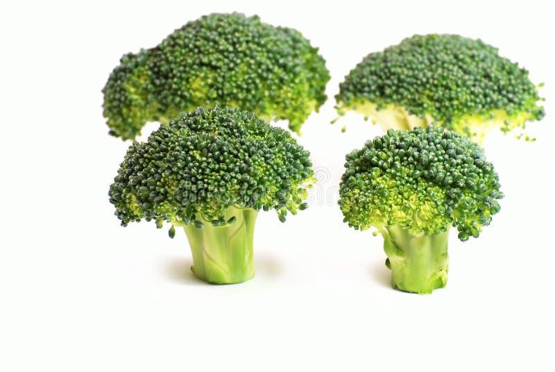Vers broccolipatroon royalty-vrije stock afbeeldingen