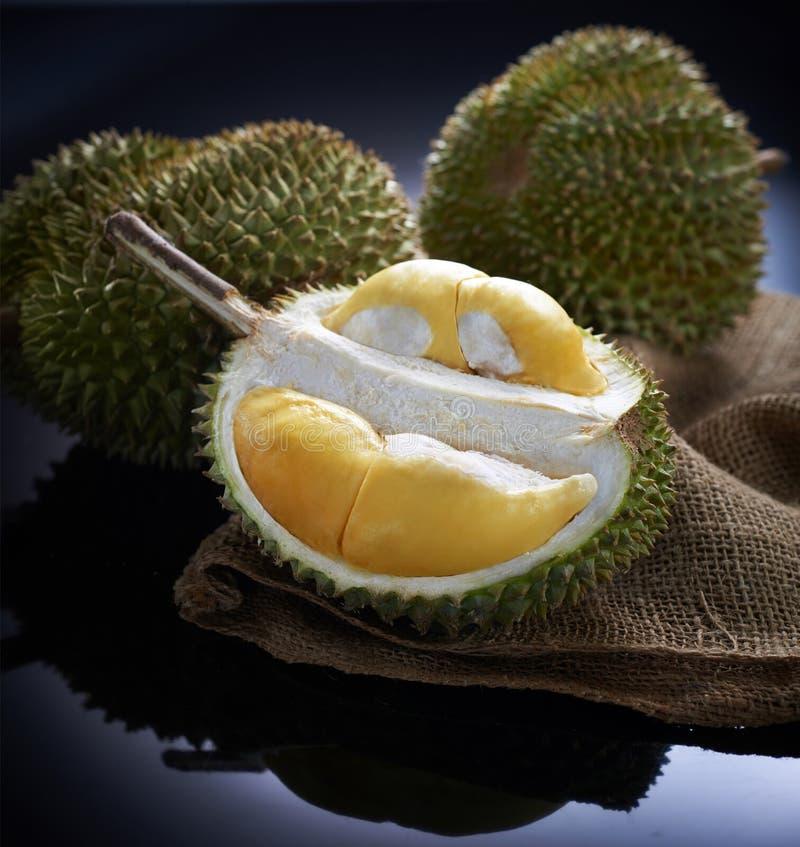 Vers durian fruit op zwarte achtergrond stock afbeelding