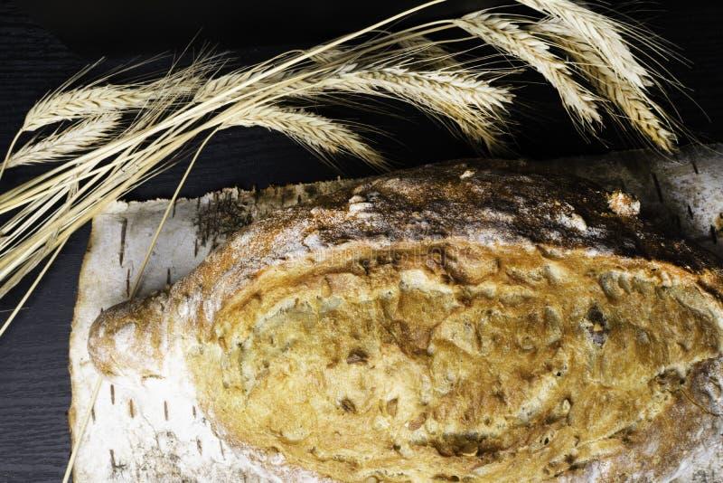Vers en heerlijk geheel tarwebrood of brood op houten berk scherpe raad voor gezonde voedingachtergrond royalty-vrije stock fotografie