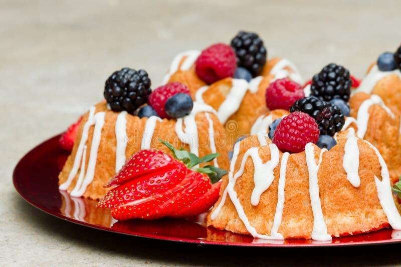 Vers fruitcakes royalty-vrije stock afbeelding