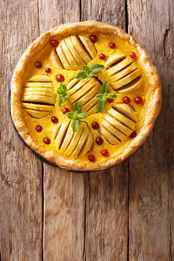 Vers gebakken appeltaart met dicht Amerikaanse veenbessen, vla en munt stock afbeeldingen
