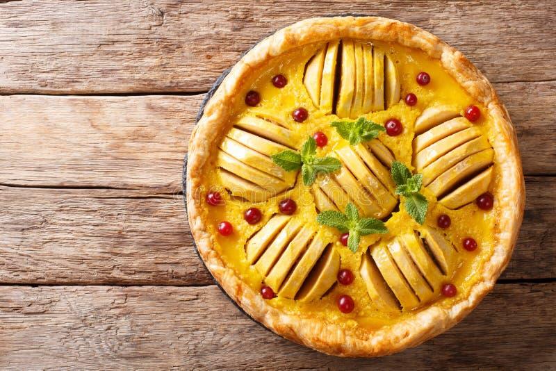 Vers gebakken appeltaart met dicht Amerikaanse veenbessen, vla en munt royalty-vrije stock afbeeldingen