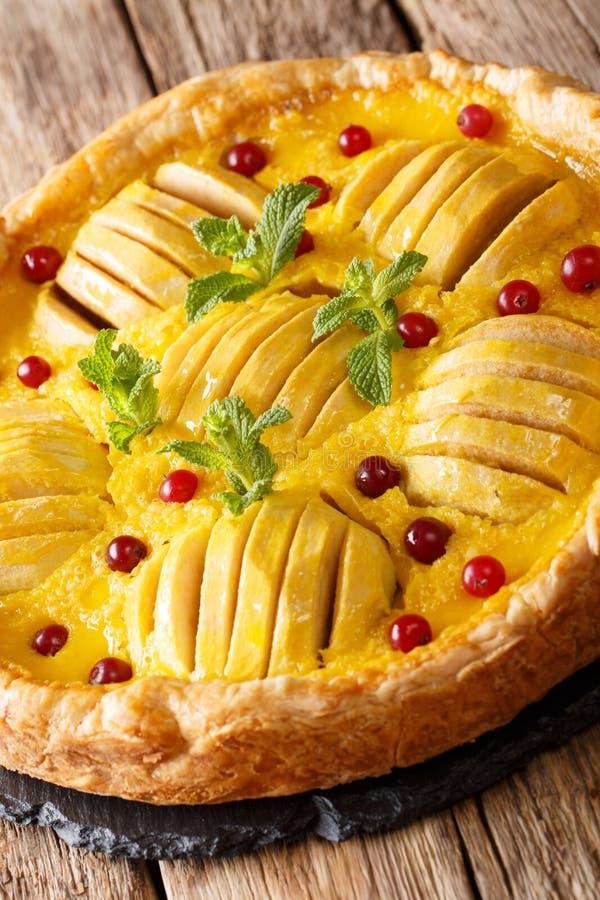 Vers gebakken appeltaart met dicht Amerikaanse veenbessen, vla en munt royalty-vrije stock afbeelding