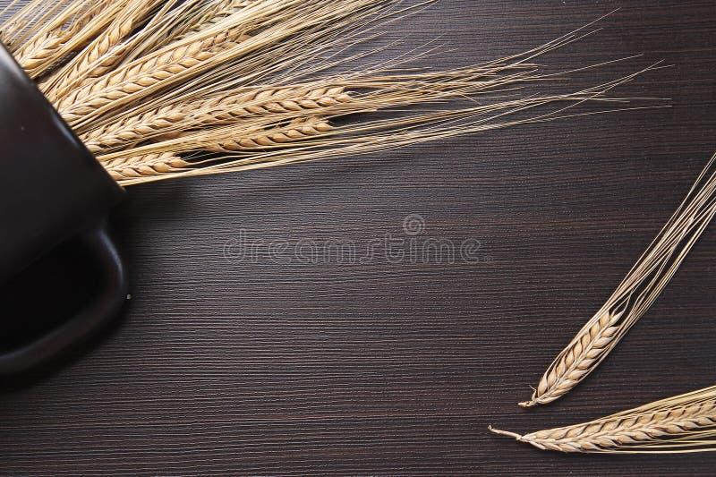 Download Vers Gebakken Brood Met Oren Van Tarwe Gele Tarwe Het Ontbijt Is Stock Afbeelding - Afbeelding bestaande uit maaltijd, voedsel: 107700833