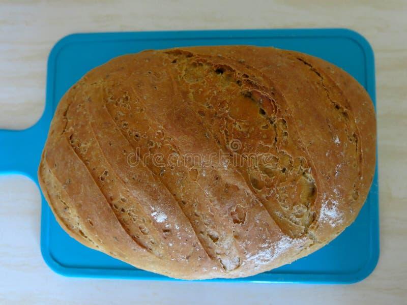 Vers gebakken brood op een blauwe mat Geurige en gezonde gebakjes Eigengemaakte Gebakjes Bloem, water, gist, kruiden, zonnebloemz stock fotografie