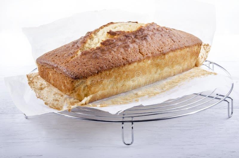 Vers gebakken madera cake op een dienblad stock fotografie