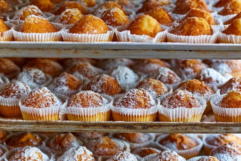 Vers-gebakken muffins op een bakselblad stock foto's