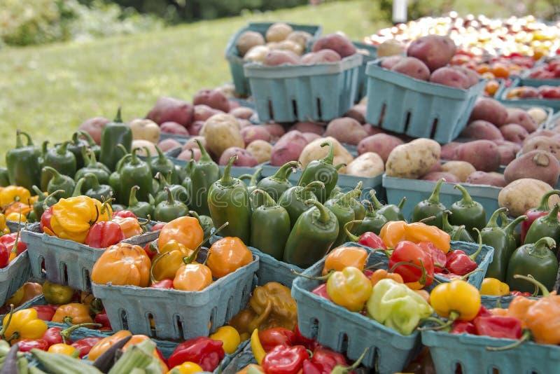 Vers geoogste tuingroenten bij de markt van een landbouwer stock foto's