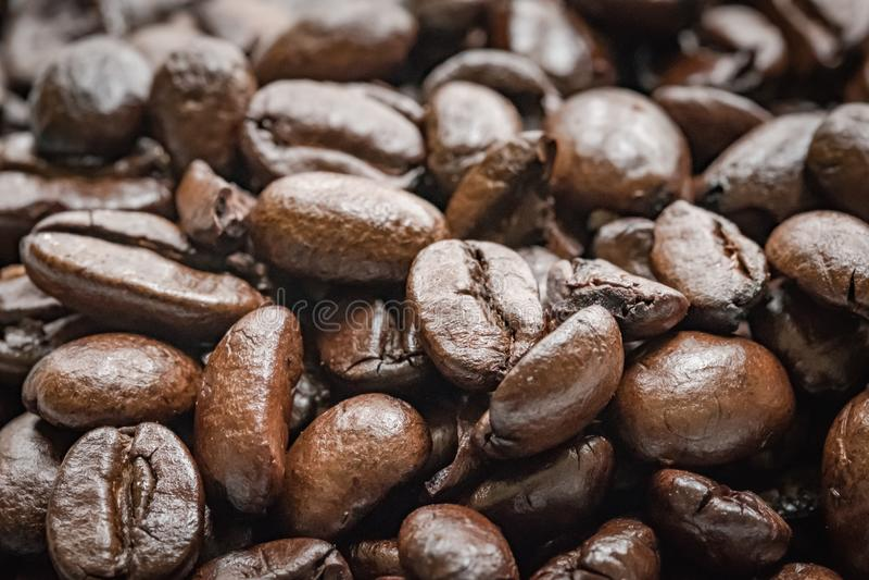 Vers geroosterde Colombiaanse gezien bonen klaar voor wordt gemalen omhoog bij een koffie royalty-vrije stock foto