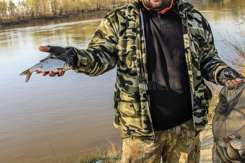 Vers gevangen kleine vissen in een vissershand royalty-vrije stock afbeelding